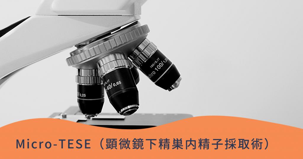 Micro-TESE(顕微鏡下精巣内精子採取術)